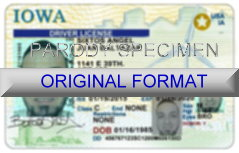 Iowa Fake ID Template Small
