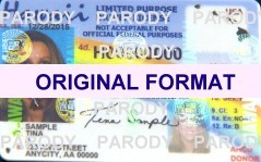 Hawaii DRIVER LICENSE ORIGINAL FORMAT, DESIGN SPECIFICATIONS, NOVELTY SECURITY CARD PROFILES, IDENTITY, NEW SOFTWARE ID SOFTWARE Hawaii driver