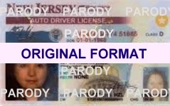 fake new jersy drivers license, fake id usa drivers license